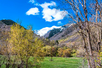 Spring in South Fork Canyon-1